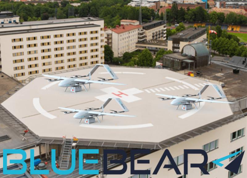 Blue-Bear-Med